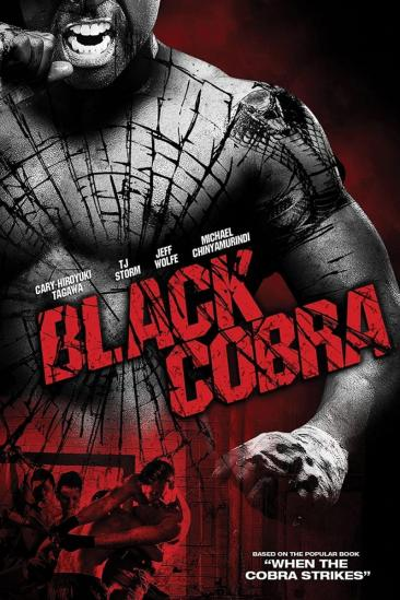 When the Cobra Strikes (2012)