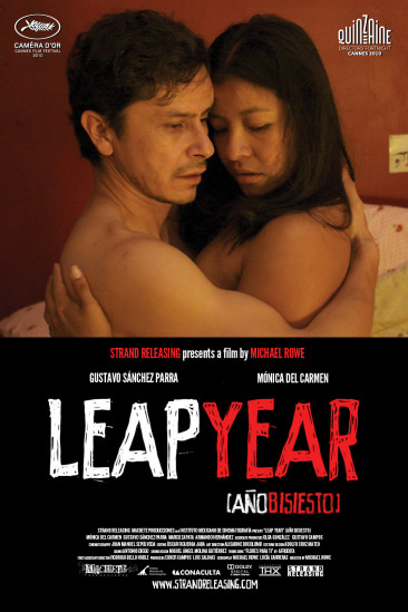 Leap Year (2011)