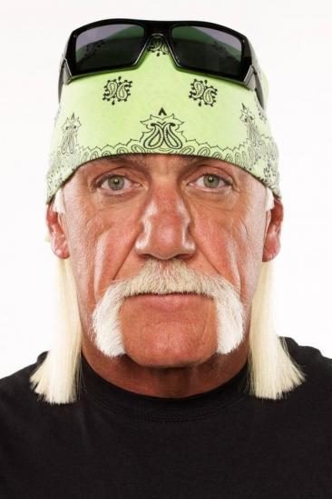 Hulk Hogan Image